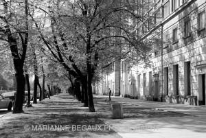 Maianne_Begaux_Allée