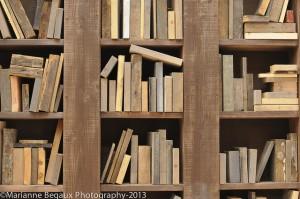 Marianne_Begaux_Bibliotheque