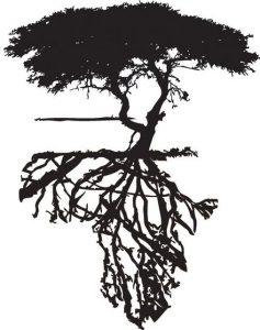 Dessin de tatouage d'arbre dont les racines dessinent la carte de l'Afrique, source : Pinterest