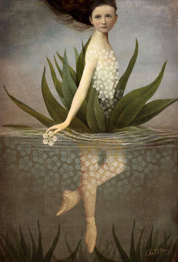 Catrin Welz-Stein, Floating Flower, source : catrinwelzstein.blogspot.be