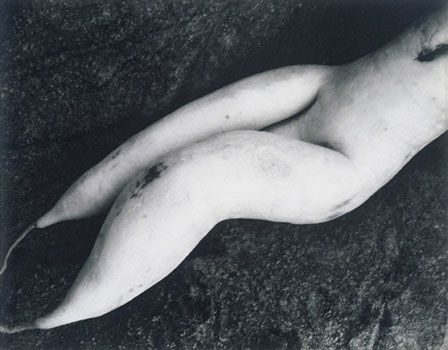 Edward Weston, White radish, pinterest.com