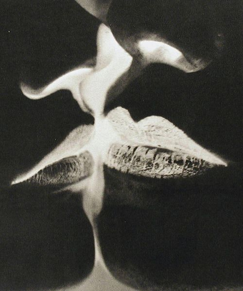 Man Ray, Negative Kiss, 1935, pinterest.com